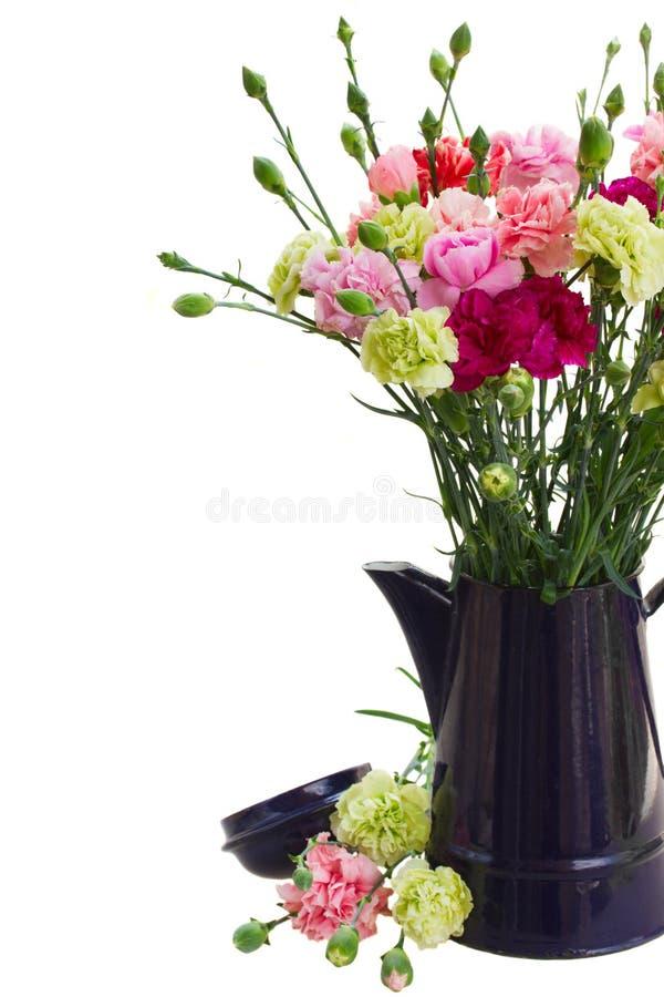 Wiązka goździków kwiaty obrazy stock