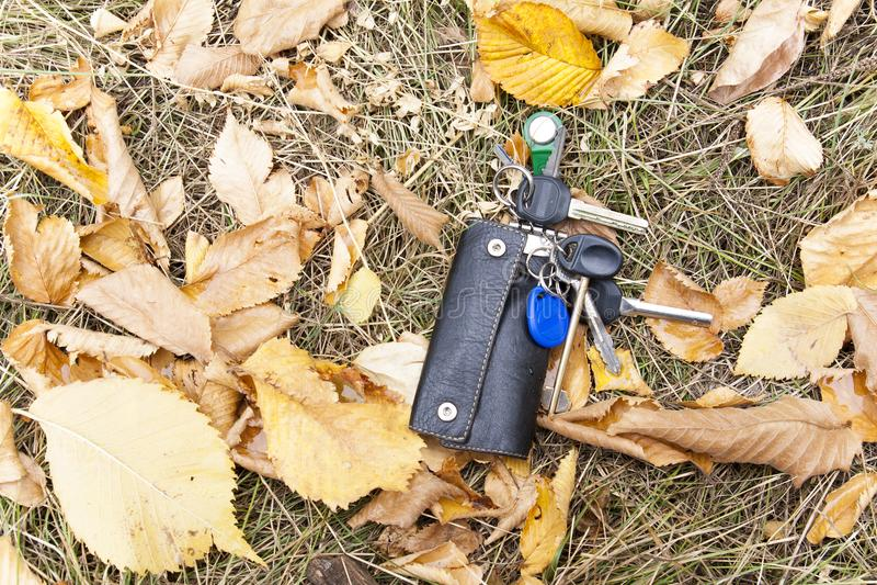 Wiązka klucze w rzemiennej skrzynce spadał ziemia, w liście zdjęcia stock