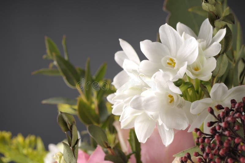 Wiązka multicolor kwiaty fotografia royalty free