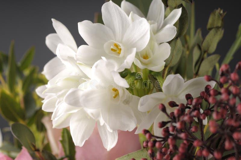 Wiązka multicolor kwiaty zdjęcie royalty free