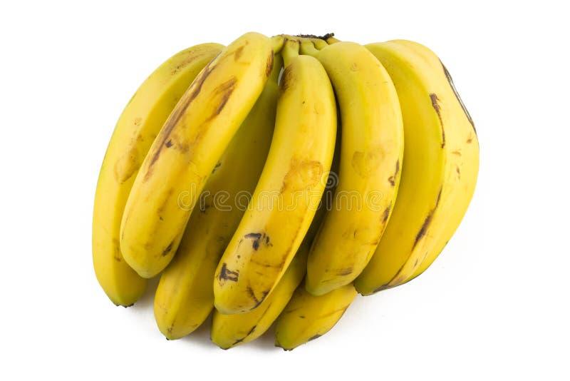 Wiązka Nanica banan zdjęcia royalty free