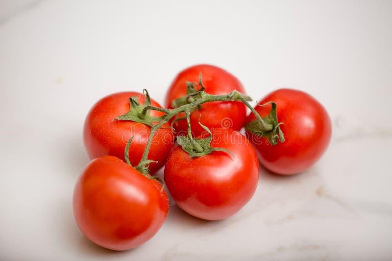 Wiązka odosobneni pomidory zdjęcie stock