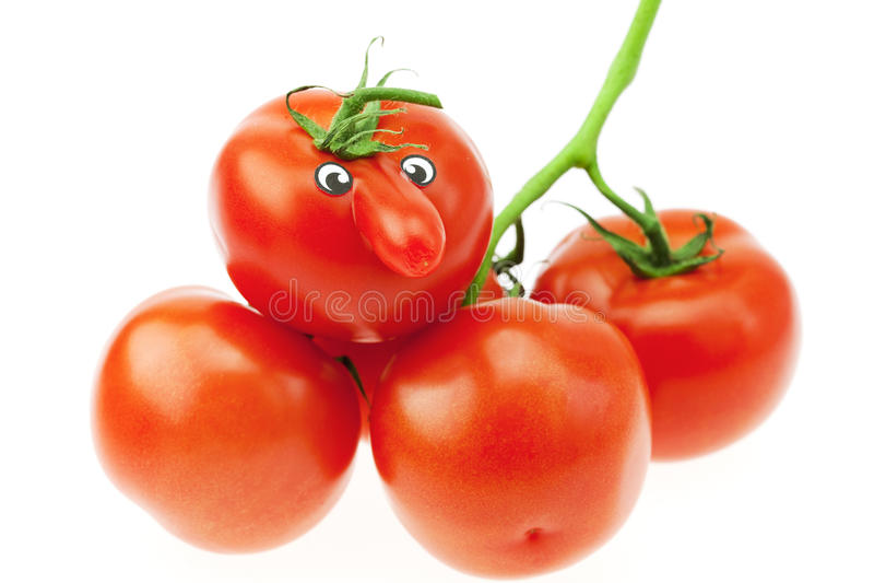 Wiązka pomidory zdjęcia stock