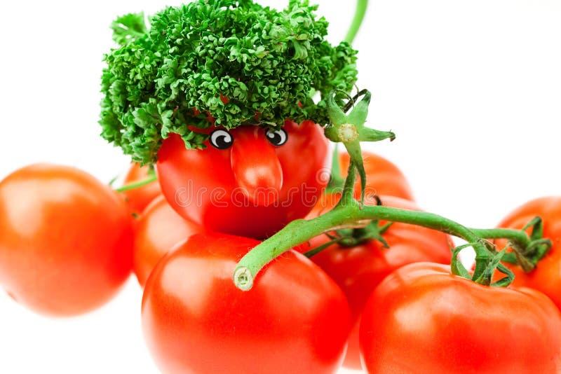wiązka przygląda się pomidoru fotografia royalty free