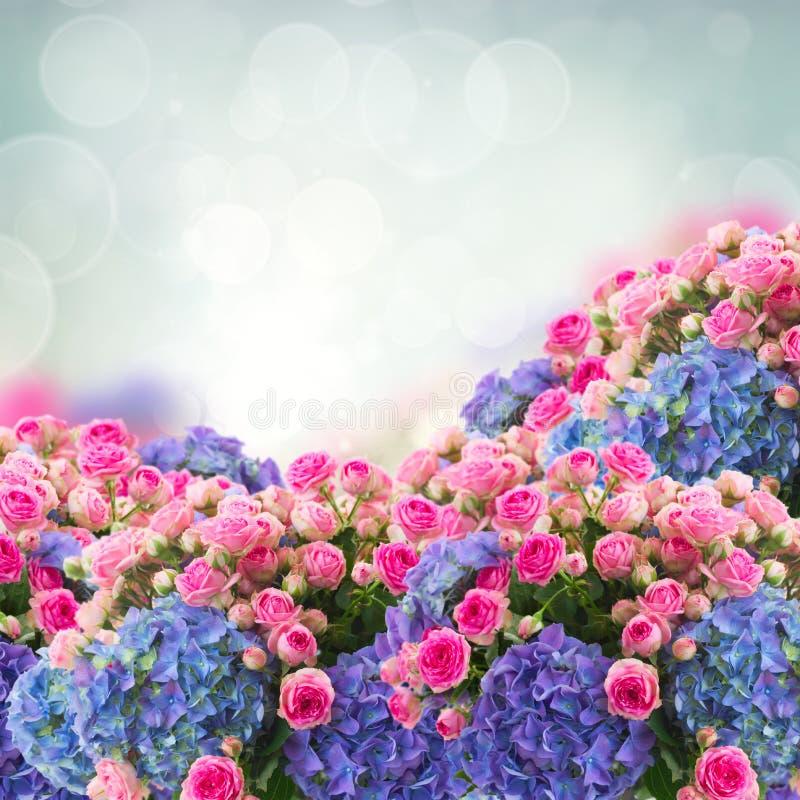Wiązka róże i hortensia kwiaty zdjęcie royalty free