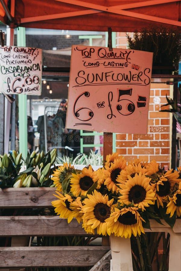 Wiązka słoneczniki na sprzedaży przy rynkiem obrazy royalty free