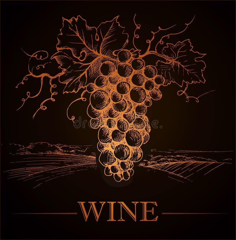 Wiązka winogrona dla etykietki wina na rocznika papierze ilustracji