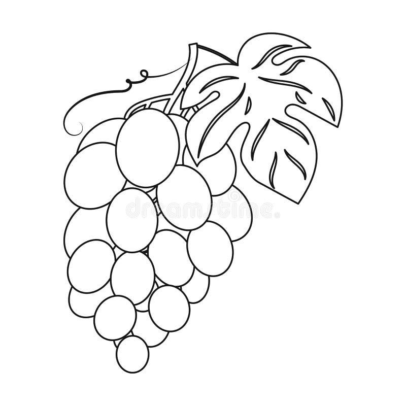 Wiązka winogrono ikona w konturu stylu odizolowywającym na białym tle Wino produkci symbol ilustracji