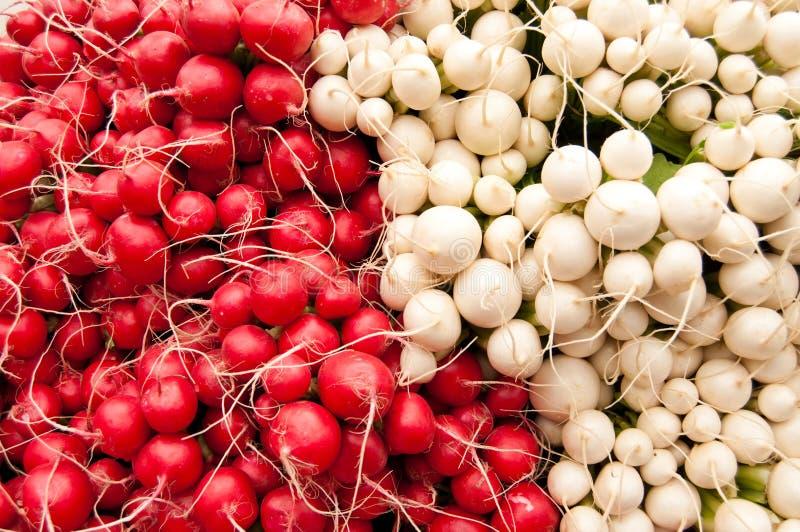 Wiązki czerwone i białe rzodkwie przy rolnicy wprowadzać na rynek fotografia stock