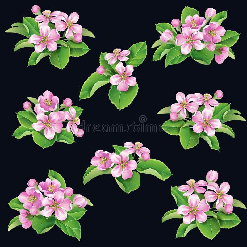 Wiązki drzewa różowy kwitnienie ilustracja wektor