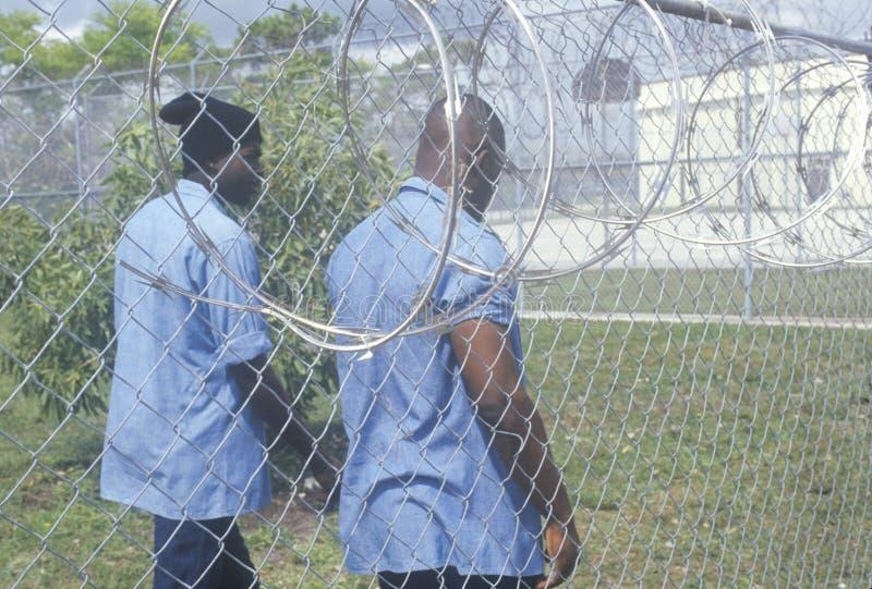 Więźniowie obraz royalty free