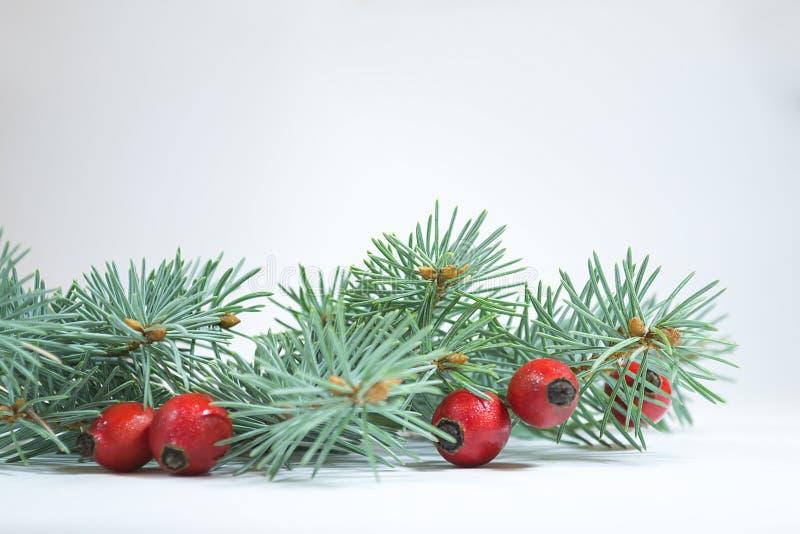 więcej toreb, Świąt oszronieją Klaus Santa niebo obrazy stock