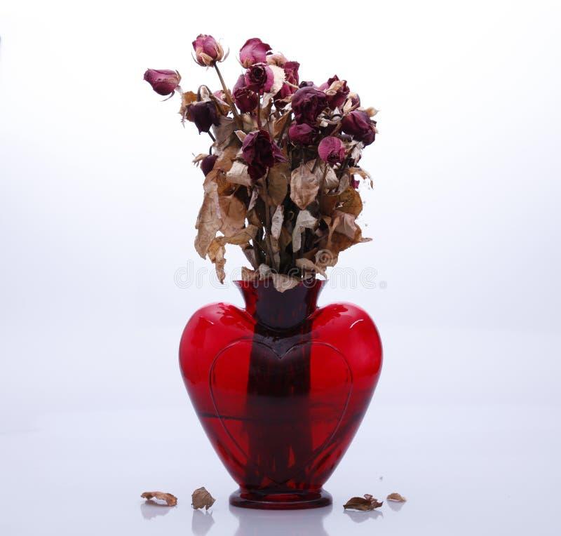 Więdnąć róże w wazowej sembolizing końcówce miłość fotografia stock