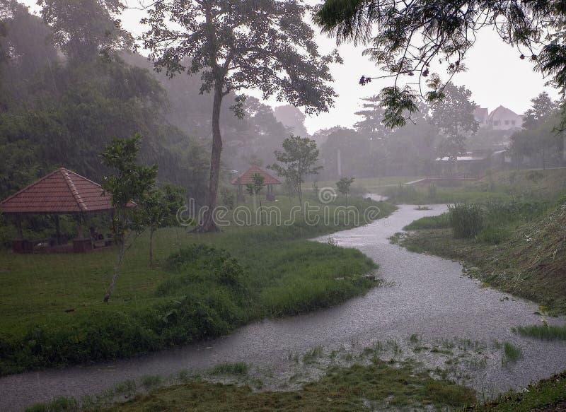 większy deszcz fotografia royalty free