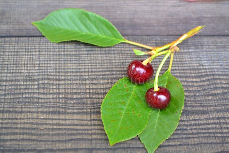 Wiśnia na gałąź z zielonym liściem karmowa ?wie?a owoc zdrowa Dwa dojrzałej jagody wiśnia na gałęziastym kłamstwie na ciemnym cze zdjęcia royalty free
