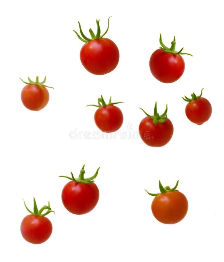 wiśnie pomidorów zdjęcie royalty free
