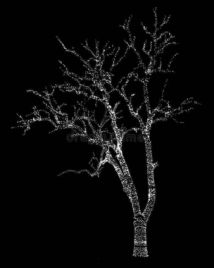 ?wi?ta moje portfolio drzewna wersja nosicieli obrazy stock