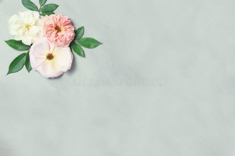 ?wi?teczny kwiatu sk?ad na szarym tle Odg?rny widok overhead zdjęcia royalty free