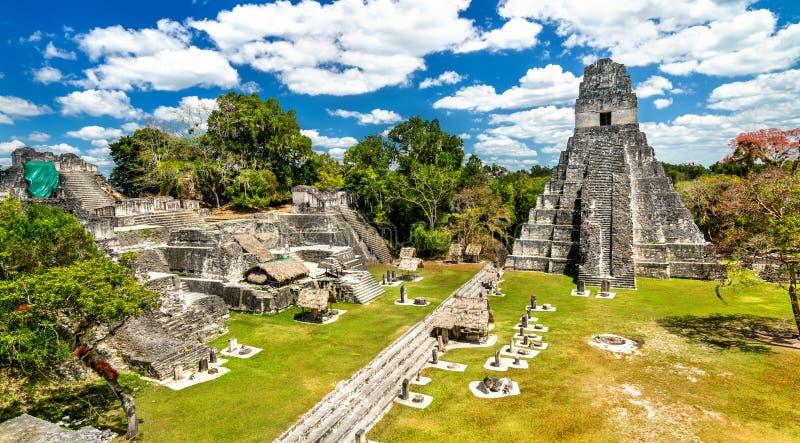 ?wi?tynia Wielki Jaguar przy Tikal w Gwatemala obraz royalty free