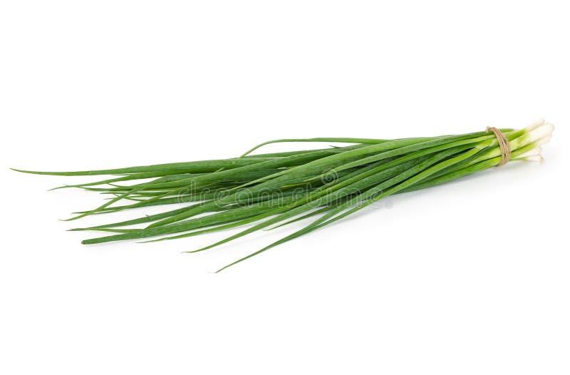 Download Wiązka Zielone cebule obraz stock. Obraz złożonej z natura - 57664605