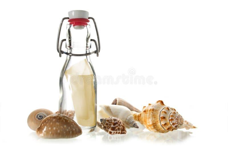 Wiadomość w butelce szkło między niektóre morzem łuska odosobnionego o zdjęcia royalty free