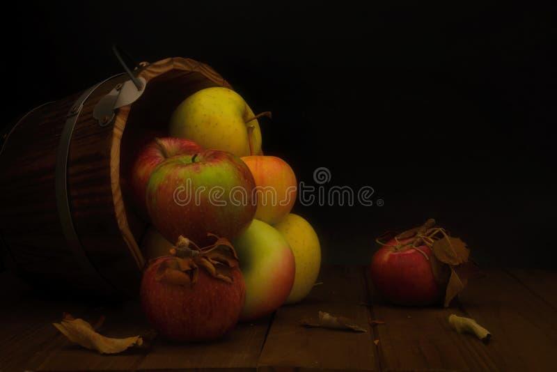 Wiadro asortowani jabłka obracający zdjęcia royalty free