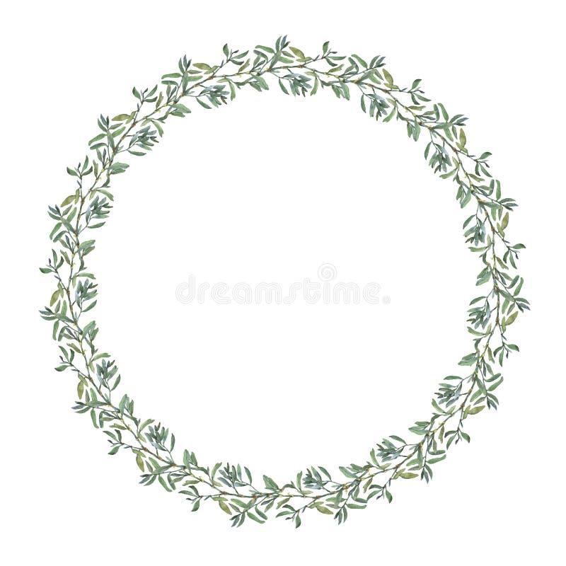 Wianek granicy rama z lat ziele, łąka kwitnie ilustracja wektor