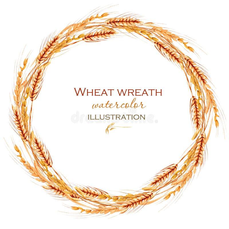 Wianek, okrąg ramy granica z pszenicznymi spikelets royalty ilustracja