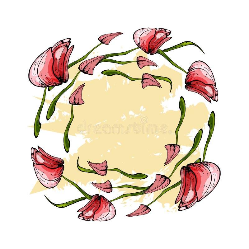 Wianek różowi tulipany obraz stock