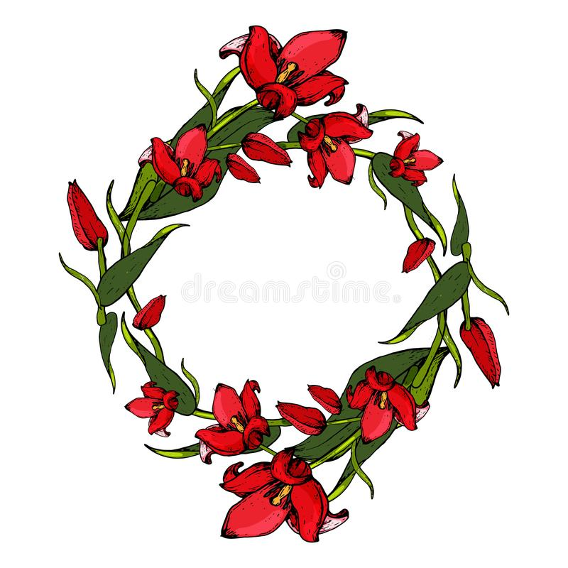 Wianek tulipany fotografia royalty free