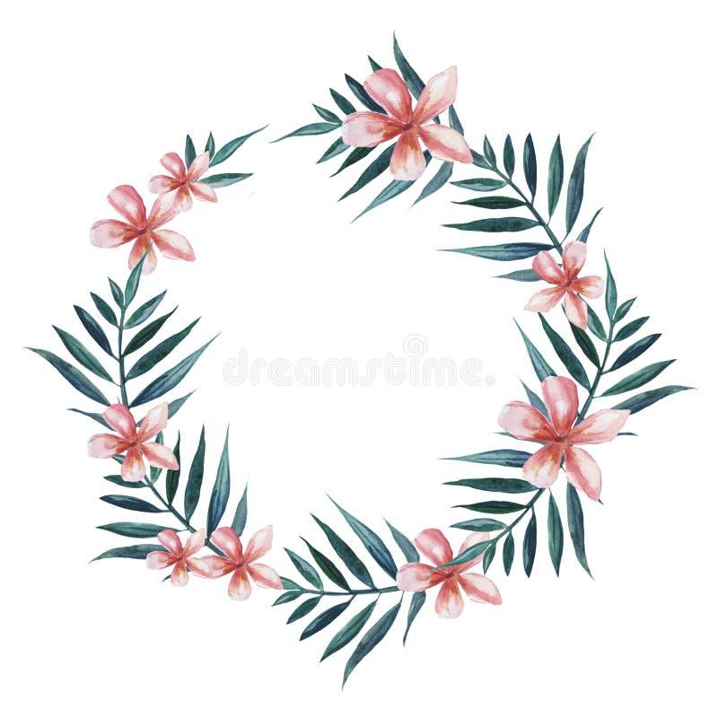 Wianek z palmą i plumeria kwiatami opuszcza ilustracja wektor