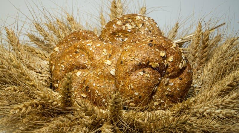 Wianek zrobi od pszenicznych ucho w nim świeżo piec chleb z Lion adra, słonecznik, bania, oatmeal, z twój swój rękami, fotografia royalty free