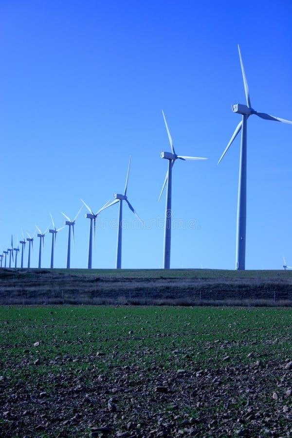 wiatr zdjęcia stock