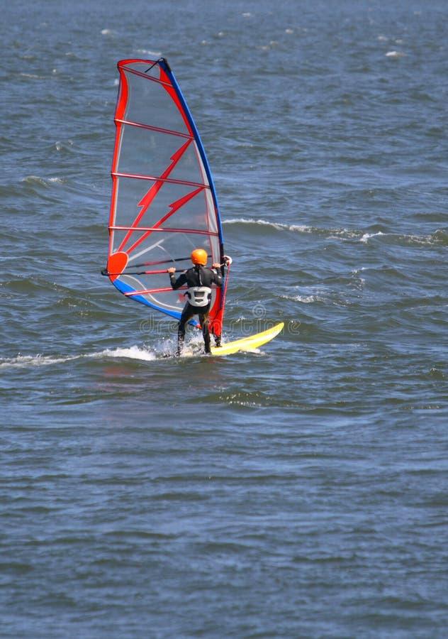 Download Wiatr surfera obraz stock. Obraz złożonej z woda, wetsuit - 3517577