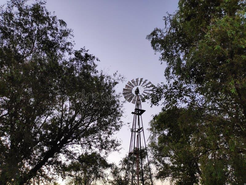 Wiatr w gospodarstwie rolnym obrazy stock
