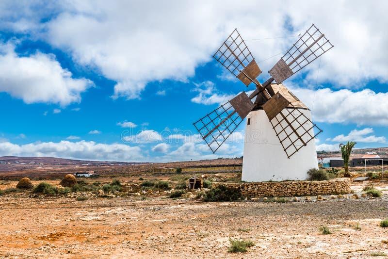 Wiatraczek - Fuerteventura, wyspy kanaryjska, Hiszpania obraz royalty free