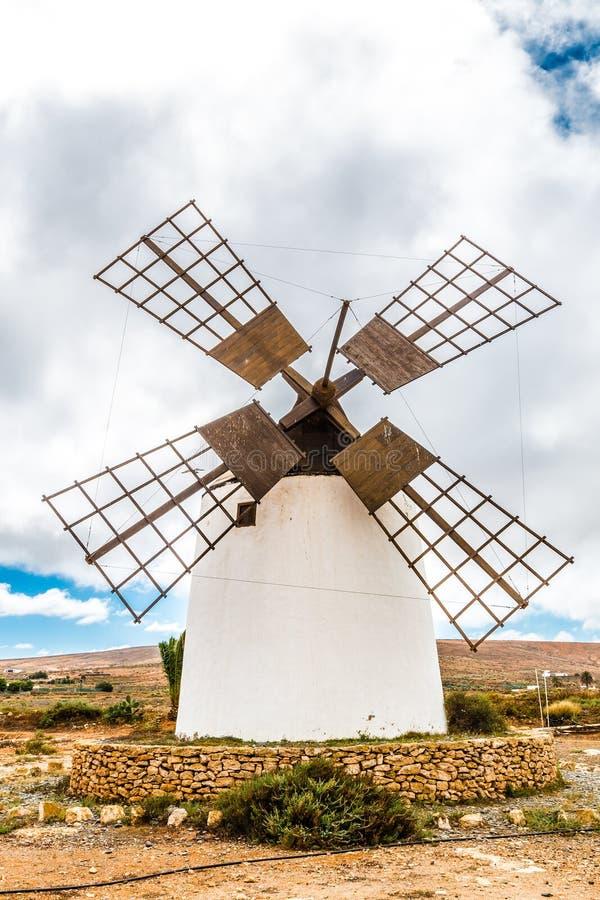 Wiatraczek - Fuerteventura, wyspy kanaryjska, Hiszpania fotografia royalty free