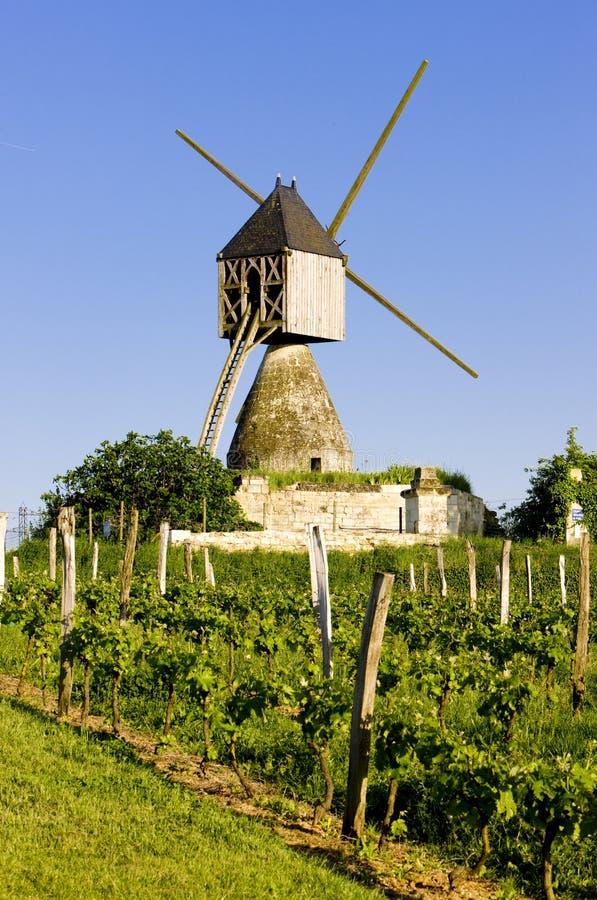 wiatraczek i winnica blisko Montsoreau, pays-de-la-loire, Francja obrazy stock