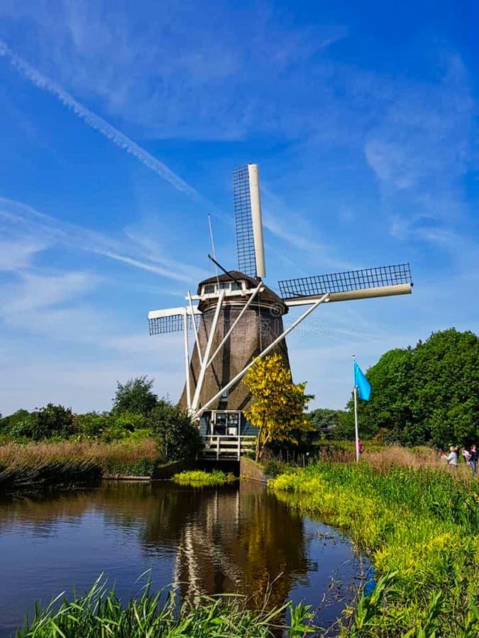 wiatraczek w Amsterdam zwiedzać obraz royalty free