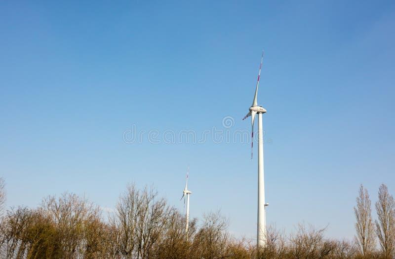 wiatraczki obrazy stock