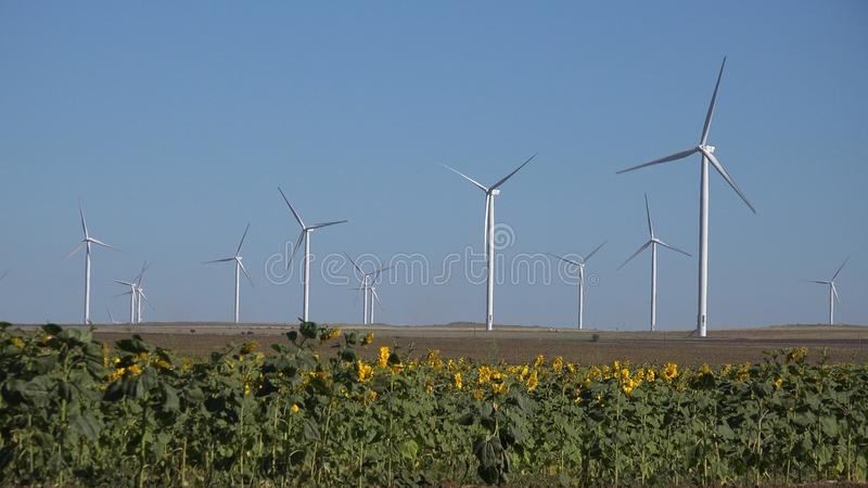 Wiatraczki, silniki wiatrowi, rolnictwa pszenicznego pola generatorowa w?adza, elektryczno?? obrazy stock