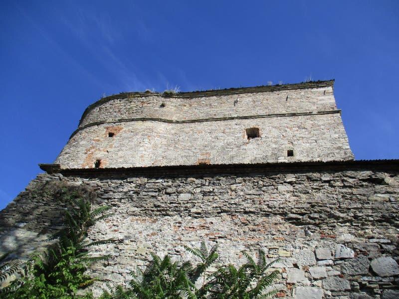 Wiatrowi pomfret, Kamenets Podolskiy, Ukraina obraz royalty free