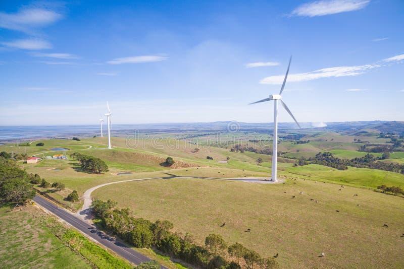 Wiatrowy gospodarstwo rolne w Australia fotografia royalty free