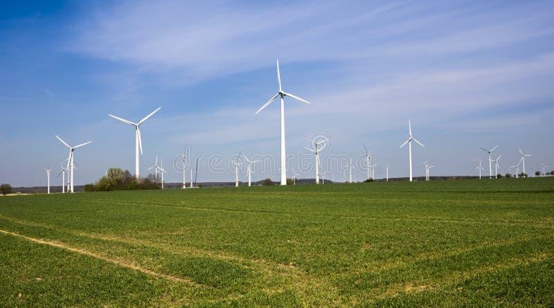 Wiatrowy gospodarstwo rolne w Północnym Westphalia, Niemcy, Europa obrazy royalty free