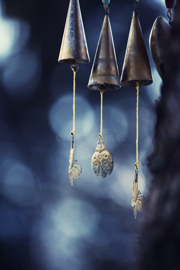 Wiatrowy muzyczny zima las zdjęcia royalty free