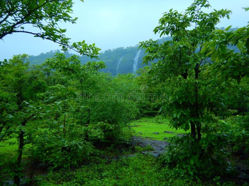 Wibrująca Indiańska monsun scena fotografia stock
