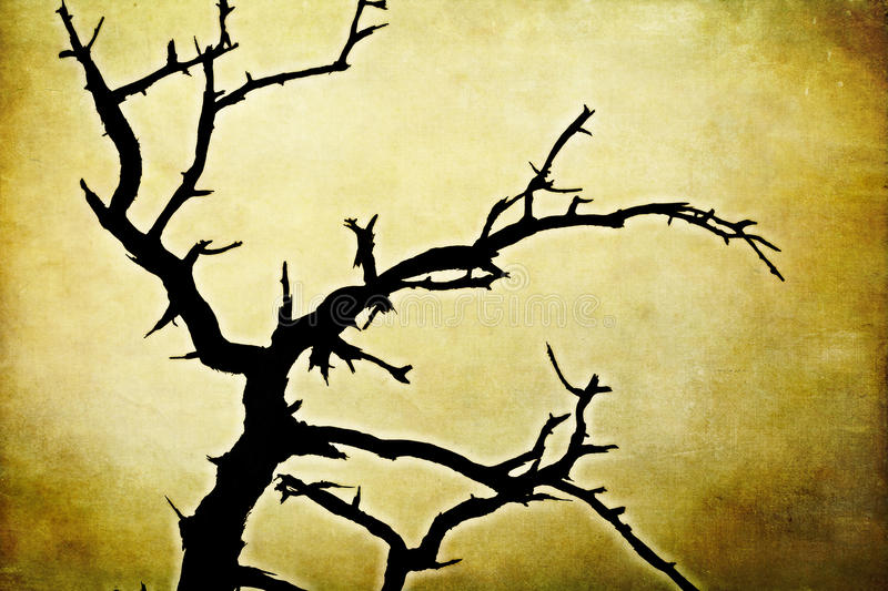 Wicked dead tree on grunge background stock photography