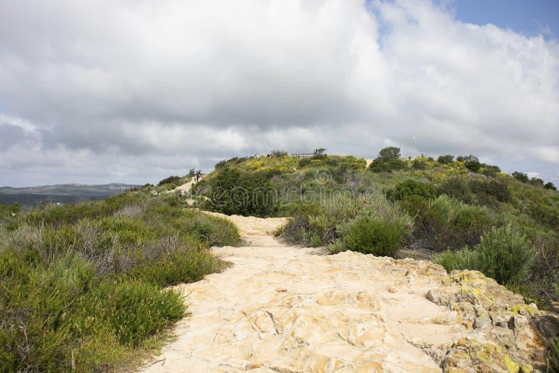 Wickelnder Weg, der zu die Spitze des Berges f?hrt lizenzfreies stockfoto