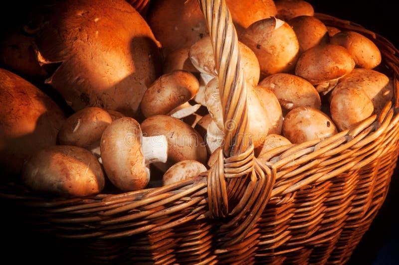 wicker грибов корзины полный стоковые фото