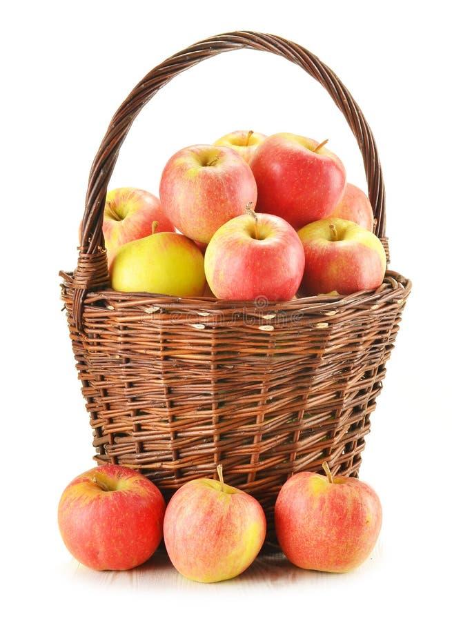 wicker яблок изолированный корзиной белый стоковое фото